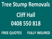 Tree & Stump Removal - Wandin