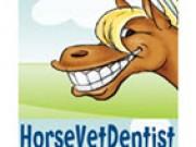 Horse Vet Dentist -