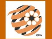 Football Federation Northern Territory