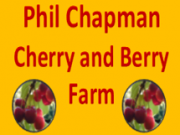 Phil Chapman Wandin Cherry and Berry Farm
