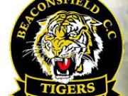 Beaconsfield Cricket Club - Tigers