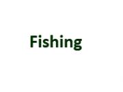 Fishing Page