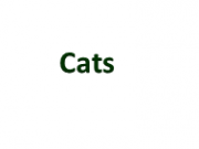 Cats Page