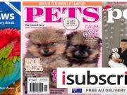 iSubscribe  Pets