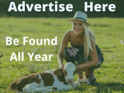 Advertise All Year